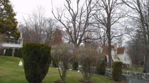 20141205XD-NeighborhoodShots (17)