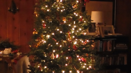 20161223xd_xmas_tree-12